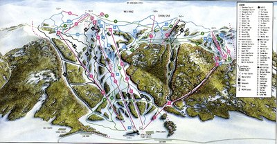 1982 Downhill  (from wikiski.com)