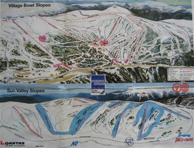 1993 Downhill  (from wikiski.com)