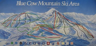 1994 Blue Cow Downhill  (from wikiski.com)