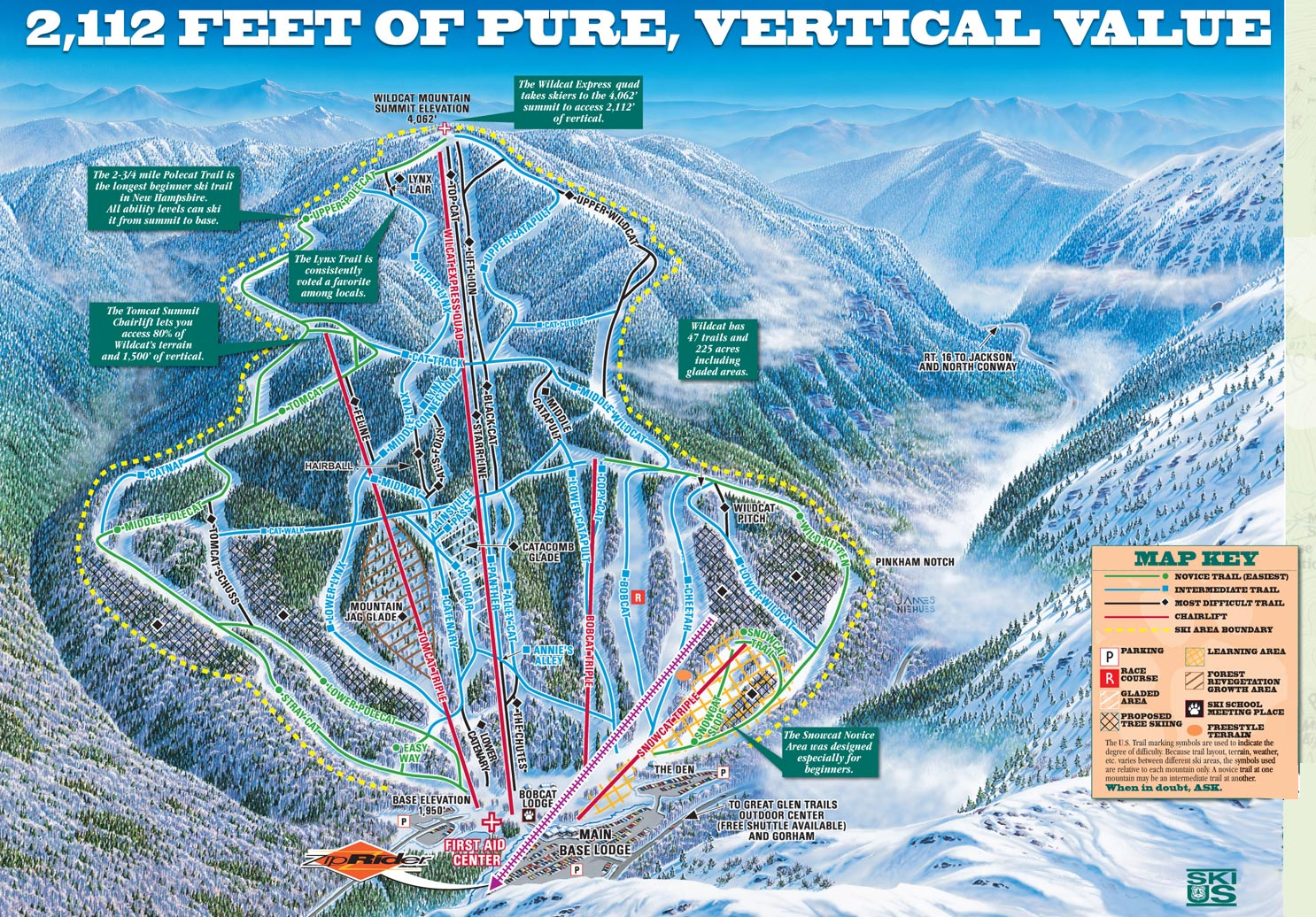Image result for wildcat ski map