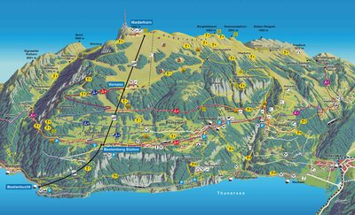 Niederhorn Hiking Trail Map