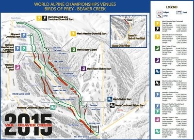 2015 FIS Alpine World Ski Championships women's downhill
